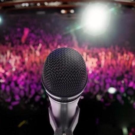 سبک های خوانندگی ٬ آموزشگاه موسیقی تهران ٬ بهترین آموزشگاه موسیقی تهران