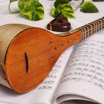 مراقبت از سه تار ، بهترین آموزشگاه موسیقی ، آموزشگاه موسیقی تهران ، کلاس آموزش سه تار