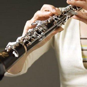 ساز ابوا ٬ بهترین آموزشگاه موسیقی تهران ٬ بهترین آموزشگاه موسیقی