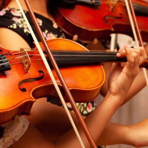 ساز فیدل ، کلاس آموزش ویولن ، کلاس موسیقی ، آموزشگاه موسیقی ، بهترین آموزشگاه موسیقی
